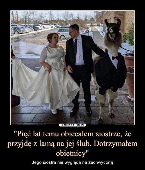 """""""Pięć lat temu obiecałem siostrze, że przyjdę z lamą na jej ślub. Dotrzymałem obietnicy"""""""