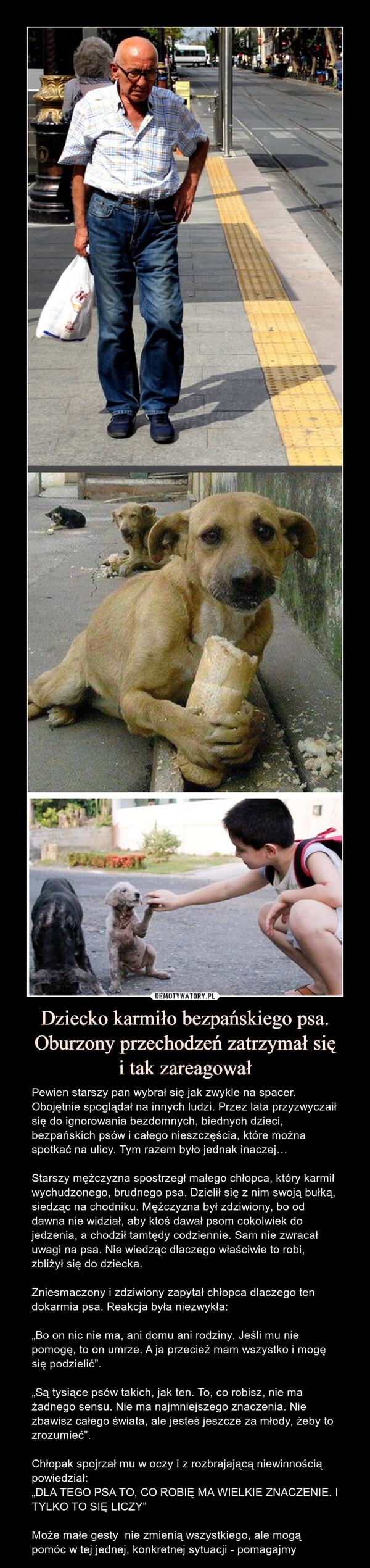 """Dziecko karmiło bezpańskiego psa.Oburzony przechodzeń zatrzymał sięi tak zareagował – Pewien starszy pan wybrał się jak zwykle na spacer. Obojętnie spoglądał na innych ludzi. Przez lata przyzwyczaił się do ignorowania bezdomnych, biednych dzieci, bezpańskich psów i całego nieszczęścia, które można spotkać na ulicy. Tym razem było jednak inaczej… Starszy mężczyzna spostrzegł małego chłopca, który karmił wychudzonego, brudnego psa. Dzielił się z nim swoją bułką, siedząc na chodniku. Mężczyzna był zdziwiony, bo od dawna nie widział, aby ktoś dawał psom cokolwiek do jedzenia, a chodził tamtędy codziennie. Sam nie zwracał uwagi na psa. Nie wiedząc dlaczego właściwie to robi, zbliżył się do dziecka. Zniesmaczony i zdziwiony zapytał chłopca dlaczego ten dokarmia psa. Reakcja była niezwykła:""""Bo on nic nie ma, ani domu ani rodziny. Jeśli mu nie pomogę, to on umrze. A ja przecież mam wszystko i mogę się podzielić"""".""""Są tysiące psów takich, jak ten. To, co robisz, nie ma żadnego sensu. Nie ma najmniejszego znaczenia. Nie zbawisz całego świata, ale jesteś jeszcze za młody, żeby to zrozumieć"""".Chłopak spojrzał mu w oczy i z rozbrajającą niewinnością powiedział:""""DLA TEGO PSA TO, CO ROBIĘ MA WIELKIE ZNACZENIE. I TYLKO TO SIĘ LICZY""""Może małe gesty  nie zmienią wszystkiego, ale mogą pomóc w tej jednej, konkretnej sytuacji - pomagajmy Pewien starszy pan wybrał się jak zwykle na spacer. Obojętnie spoglądał na innych ludzi. Przez lata przyzwyczaił się do ignorowania bezdomnych, biednych dzieci, bezpańskich psów i całego nieszczęścia, które można spotkać na ulicy. Tym razem było jednak inaczej… Starszy mężczyzna spostrzegł małego chłopca, który karmił wychudzonego, brudnego psa. Dzielił się z nim swoją bułką, siedząc na chodniku. Mężczyzna był zdziwiony, bo od dawna nie widział, aby ktoś dawał psom cokolwiek do jedzenia, a chodził tamtędy codziennie. Sam nie zwracał uwagi na psa. Nie wiedząc dlaczego właściwie to robi, zbliżył się do dziecka. Zniesmaczony i zdziwiony zapytał chłopca dlacz"""