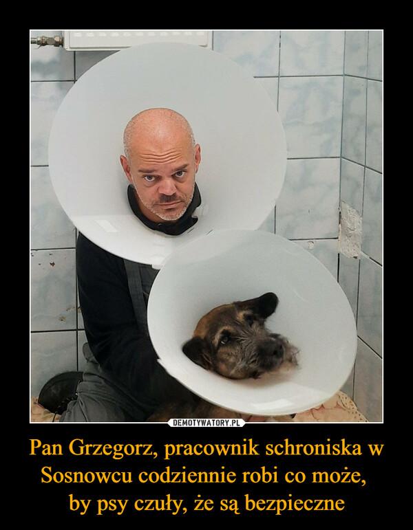 Pan Grzegorz, pracownik schroniska w Sosnowcu codziennie robi co może, by psy czuły, że są bezpieczne –
