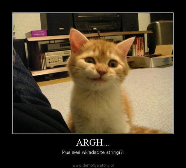 ARGH... – Musiałeś wkładać te stringi?!