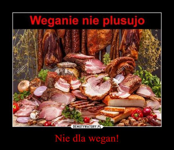 Nie dla wegan!